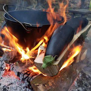 Auberginen-Feuer-klein